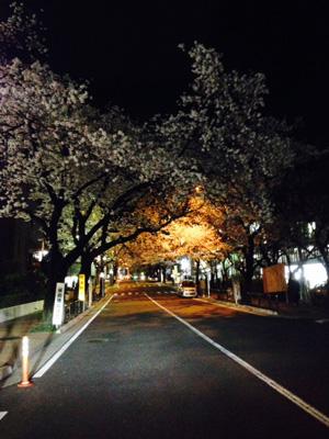 富士見坂夜.jpg